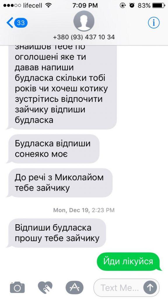 golubi-vsyudi_3